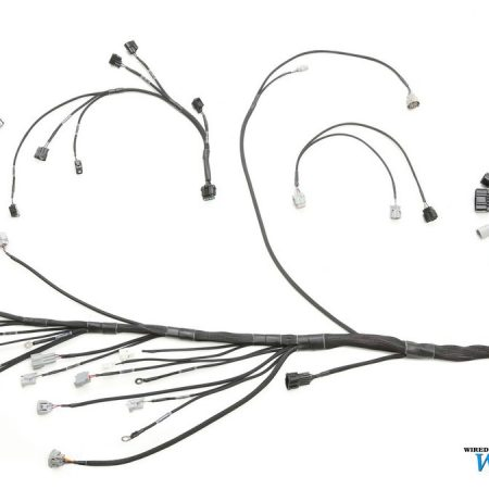 Ls1tobmwe30w furthermore Custom Engine Wiring Harness as well E30 1jz Gte Wiring Harness together with E30 M50 Engine Wire Harness Diagram furthermore Electrical Ignition Wiring Harnesses. on e36 ls1 wiring harness