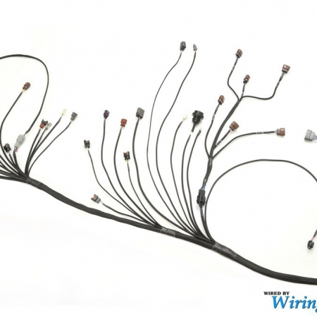 Wiring Specialties RB25DET S15 Silvia Wiring Harness