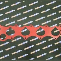 F20C/F22C1 Thermalnator Gasket