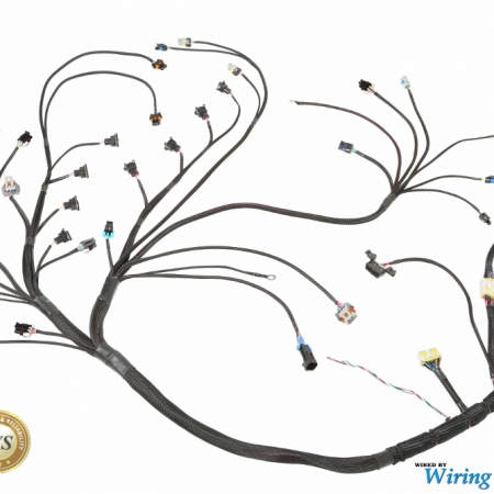 ls1 race wiring harness with Wiring Specialties Ls1 Harness on Nitrous Kit Wiring Diagram moreover S13 Ls1 Wiring Harness in addition Serpentine Alternator Wiring moreover Universal Ls1 Wiring Harness besides 1jz S13 Wiring Harness.
