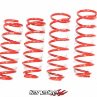 Tanabe NF210 Coil Springs - Lexus LS430  exc. Air Suspension (2001-2006)