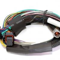 Haltech Elite 1500 8′ Basic Universal Wire-in Harness