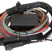 Haltech Elite 1500 Premium Universal Wire-in Harness